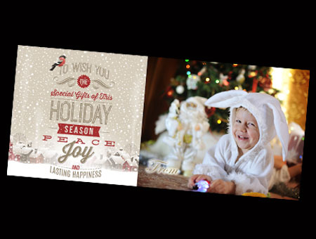Insty Belgrade Livingston Holiday Christmas Photo Cards